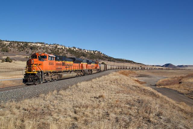 BNSF 8585 Spruce 23 Jan 21