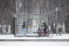 Uppsala, January 25, 2021