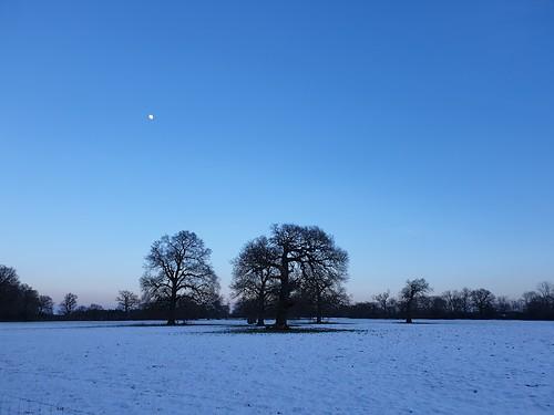 snow winter landscape rural england