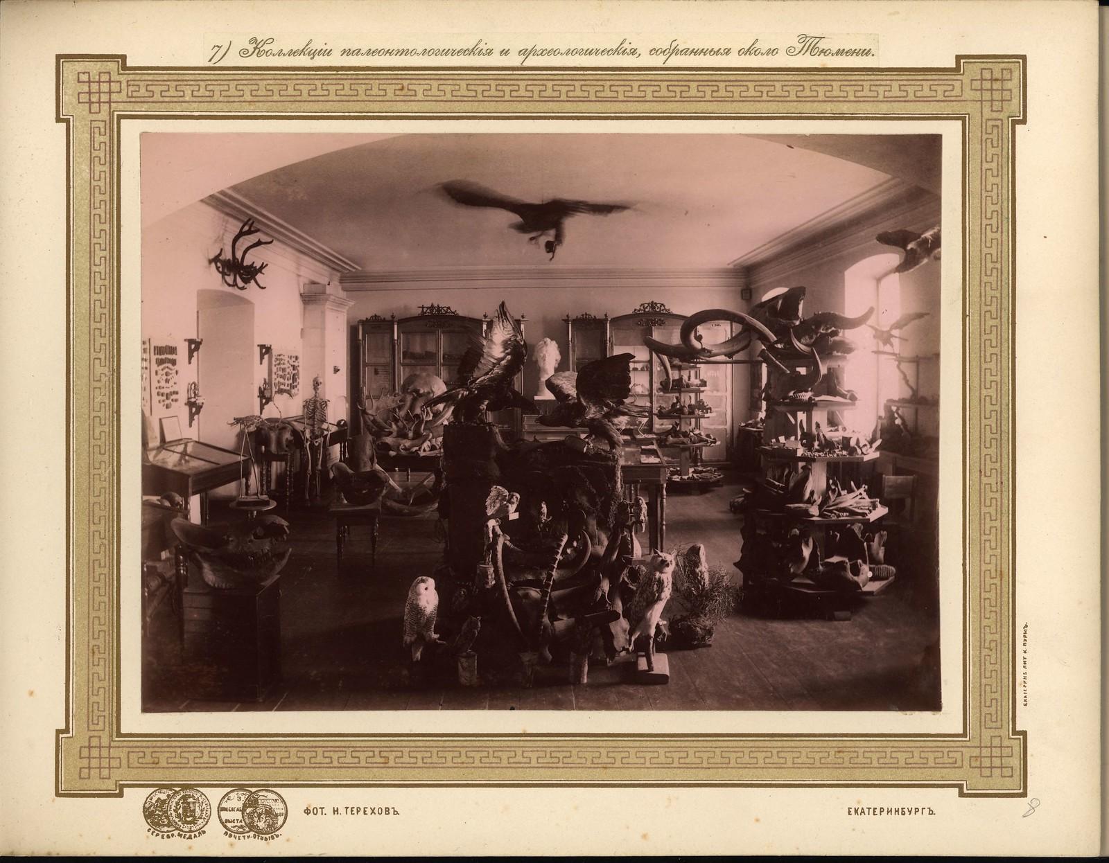 08. Коллекции палеонтологические и археологические, собранные около Тюмени