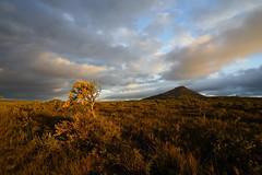 Mooja Sunset Cape Le Grande