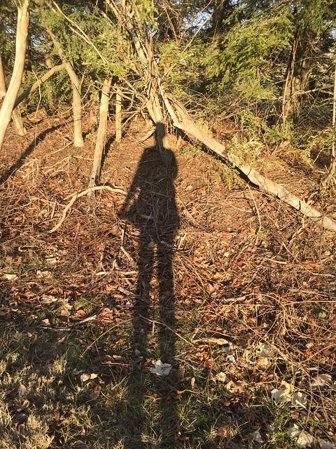 afowler-shadow
