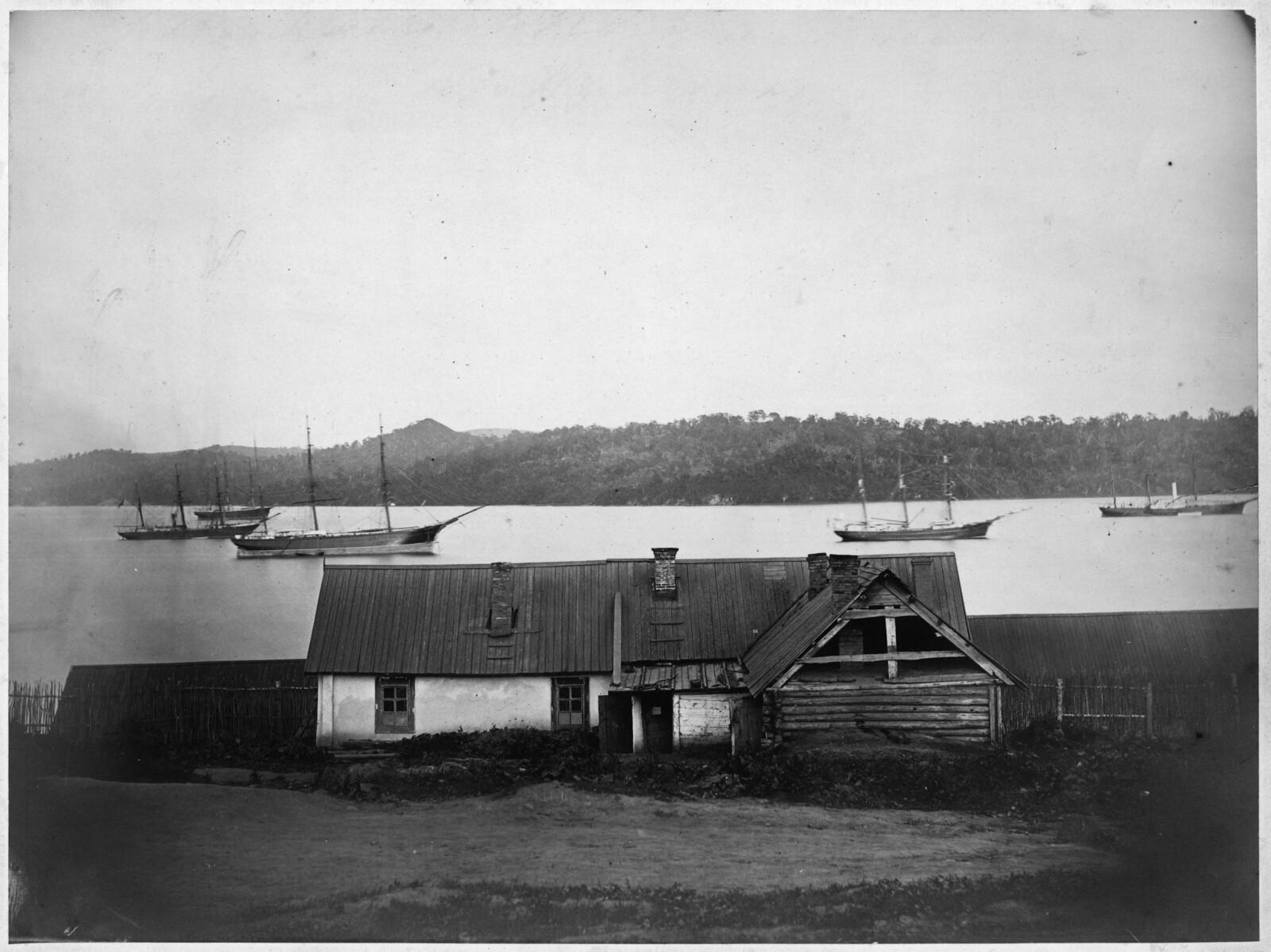Вид бухты. 1875