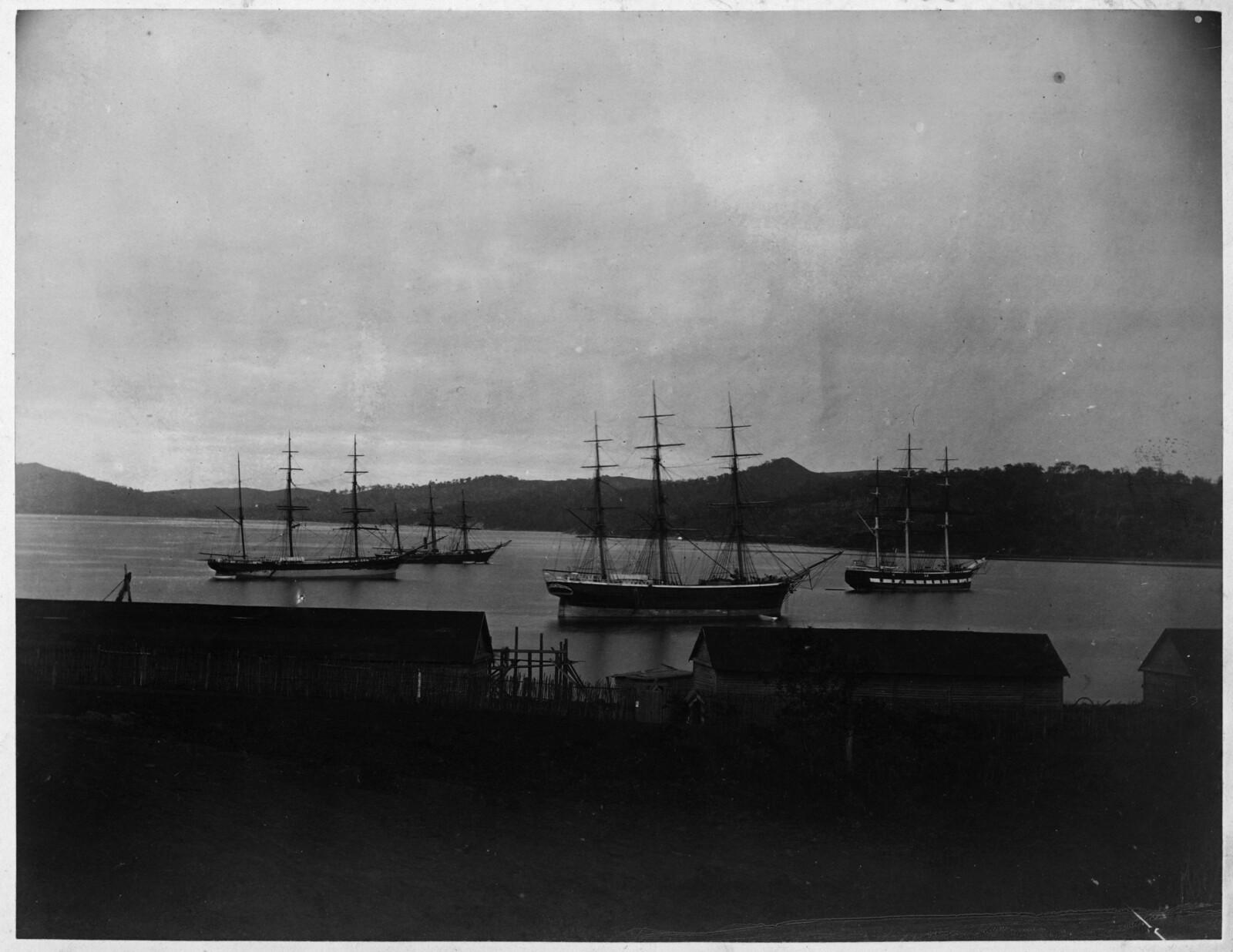 Вид бухты 1875.