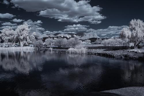 infrared infraredphotography ir convertedinfraredcamera channelswapping lindolake clouds trees foliage composition water lakeside mountains