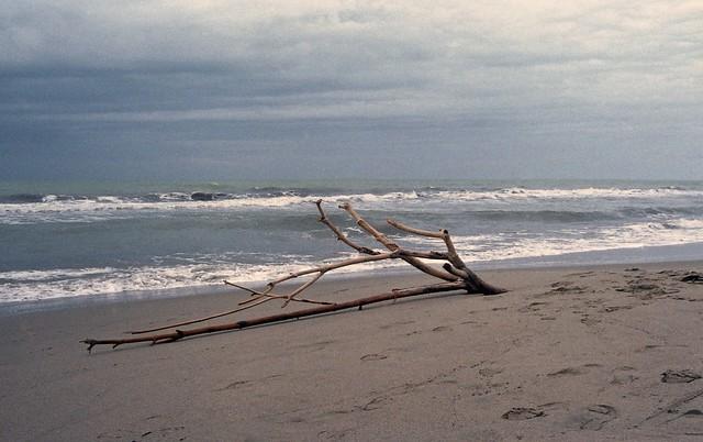Venti minuti al mare con pioggia e vento