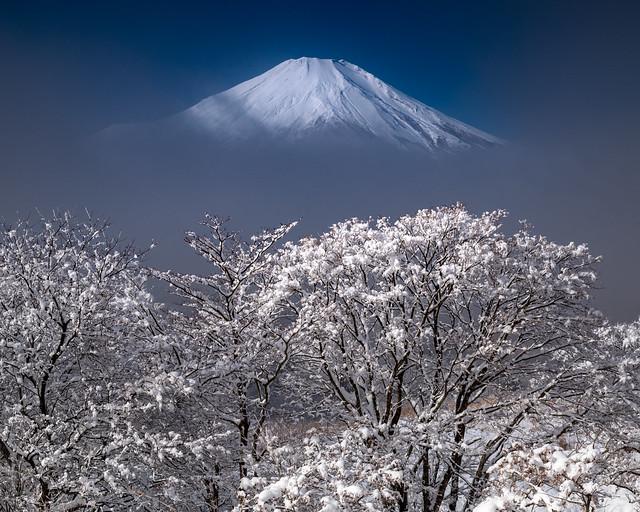 Fresh snow Fuji in the fog