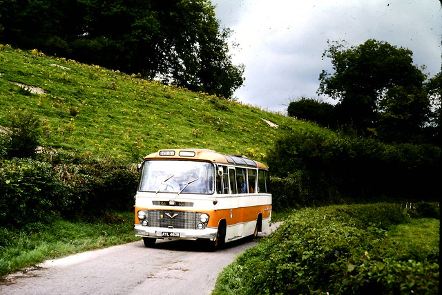 Warren(Altonian)-AYL460B-Tichborne-1980KN