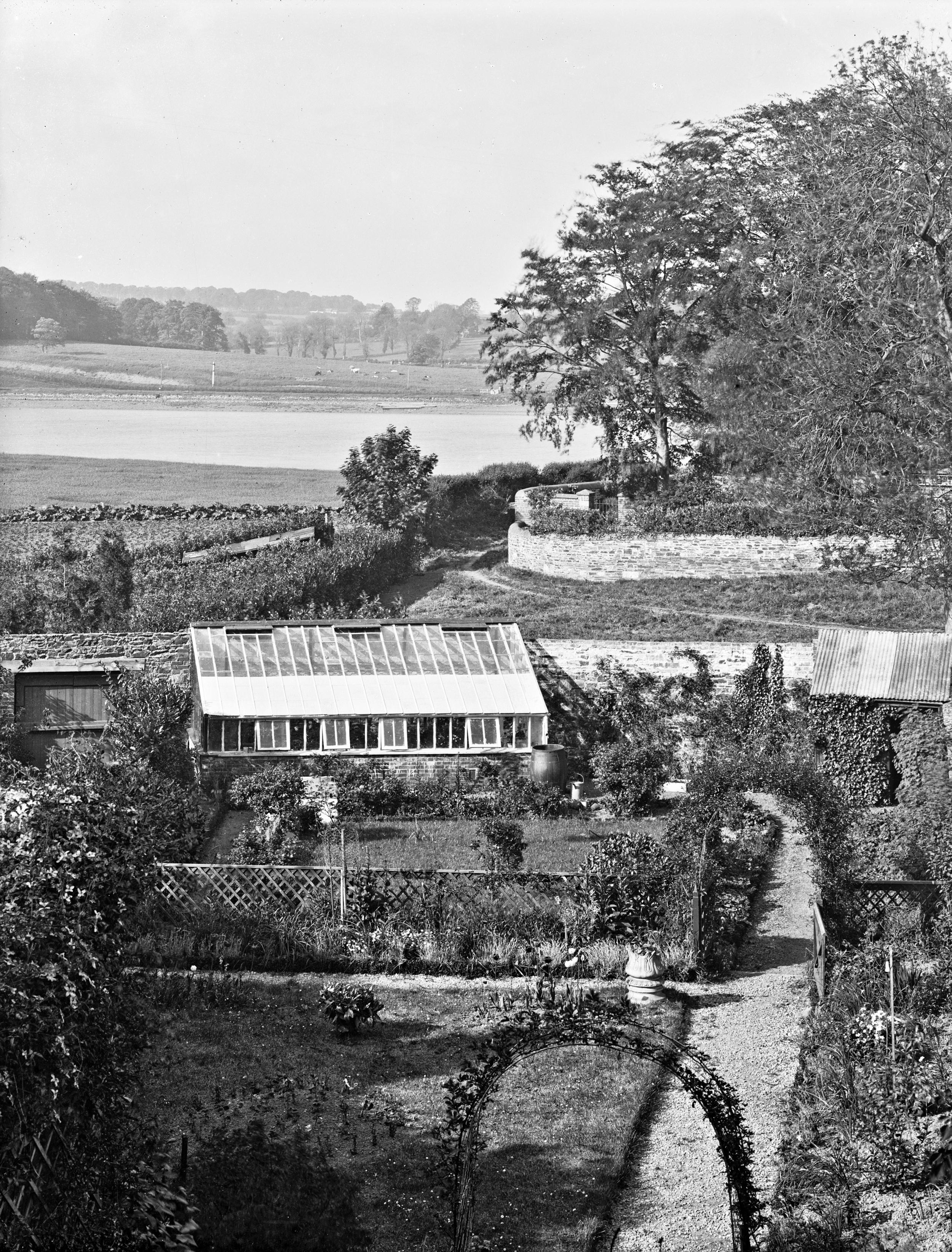 Mrs. Murphy's back garden