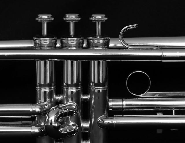2021_01 trumpet_03