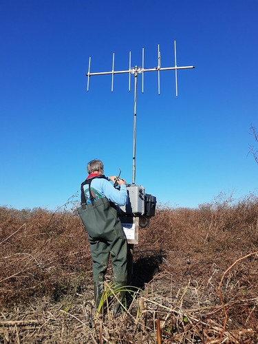 Photo of man installing tall receiver antenna
