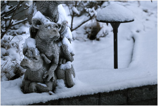 Baby Dragons In Yesterday's Snow