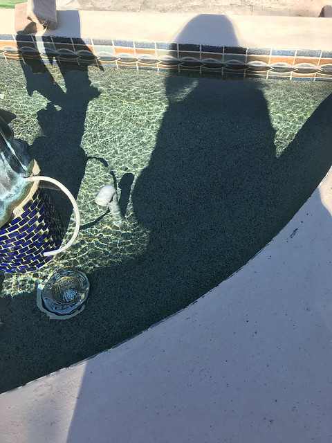 My Shadow Together With a Dolphin Sculpture Shadow