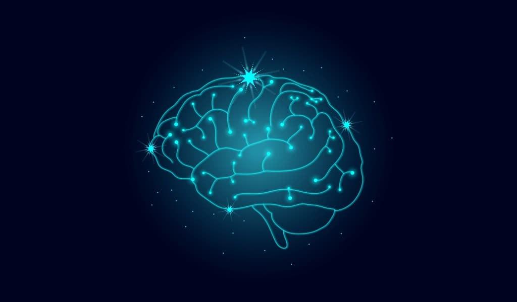 simuler-le-cerveau-des-singes-avec-un-GPU-bon-marché