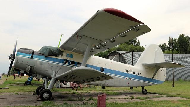 UP-A0317