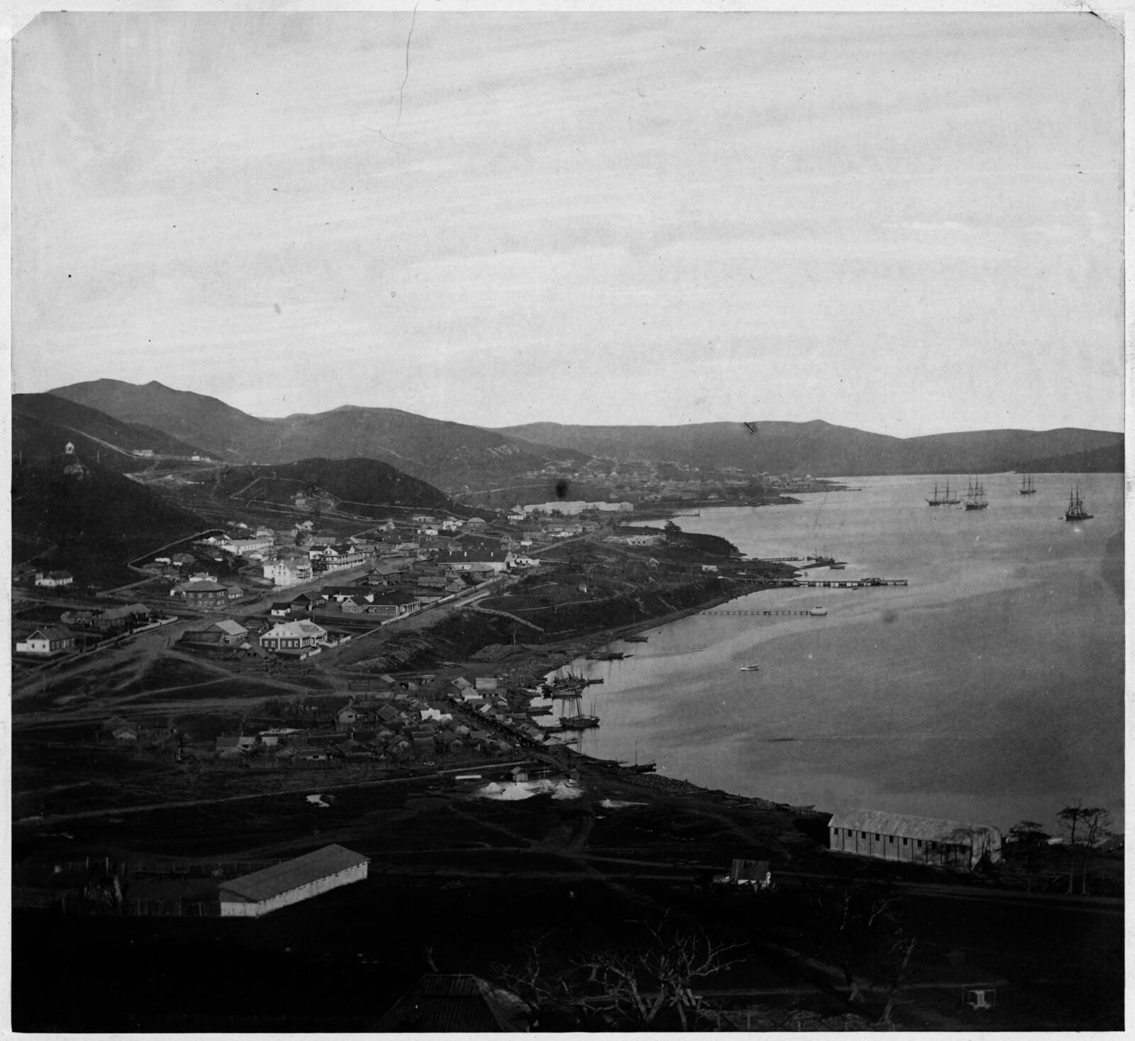 Отдаленный вид на город. 1875
