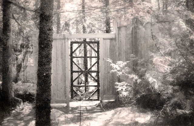 Gateway in Woods