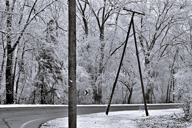 Winter Wonders #31