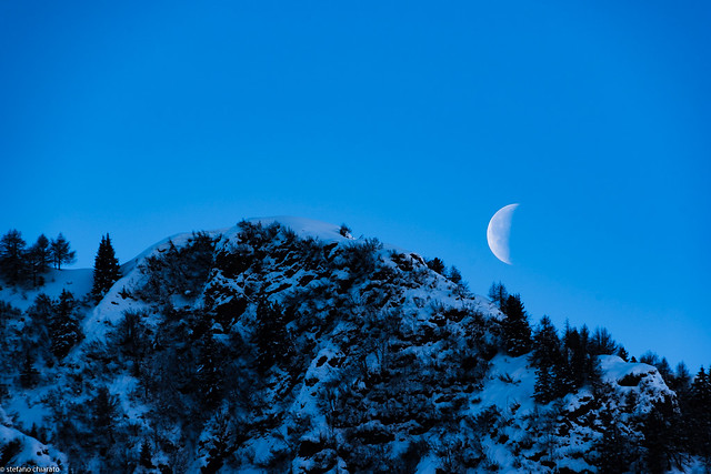 La pallida luna.