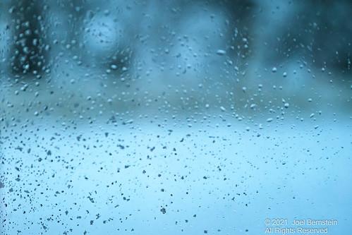 oysterbay snowflakes blizzard storm backyard woods snowstorm newyork longisland snow trees unitedstatesofamerica drops oysterbaycove windowview northamerica window forest waterdrops li ny us usa unitedstates nature