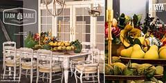 Pitaya - Farm table Mood @ Anthem