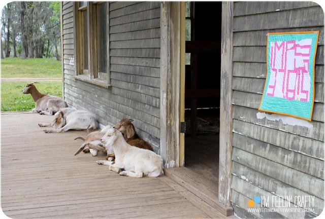 Impossible-Goats-ImFeelinCrafty