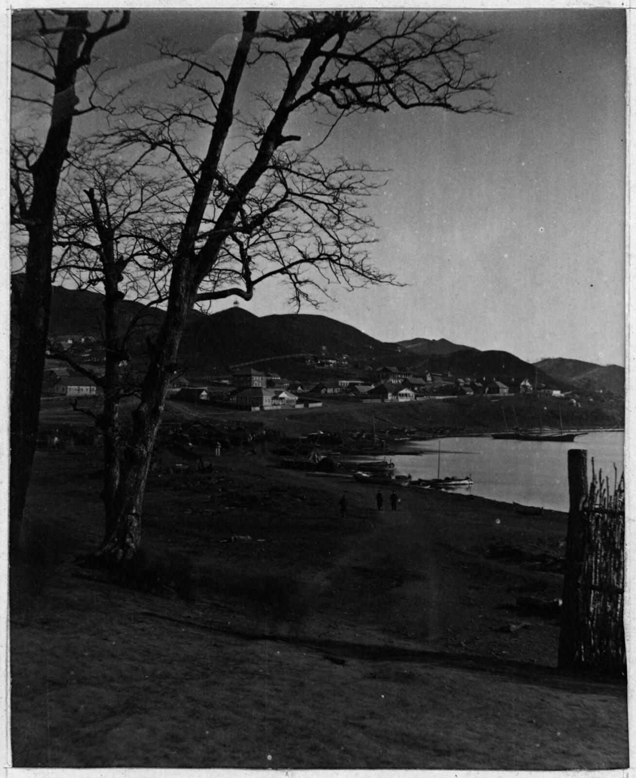 Отдаленный вид на город. 1875..