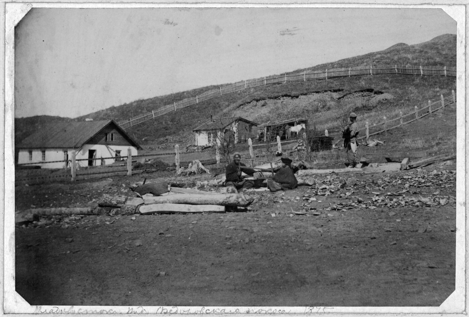 Вид Федоровского покоса во Владивостоке. 1875.