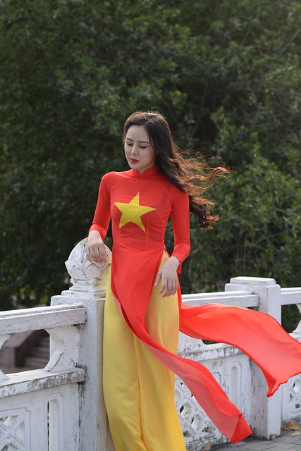 young girl in aodai (vietnam traditional dress)