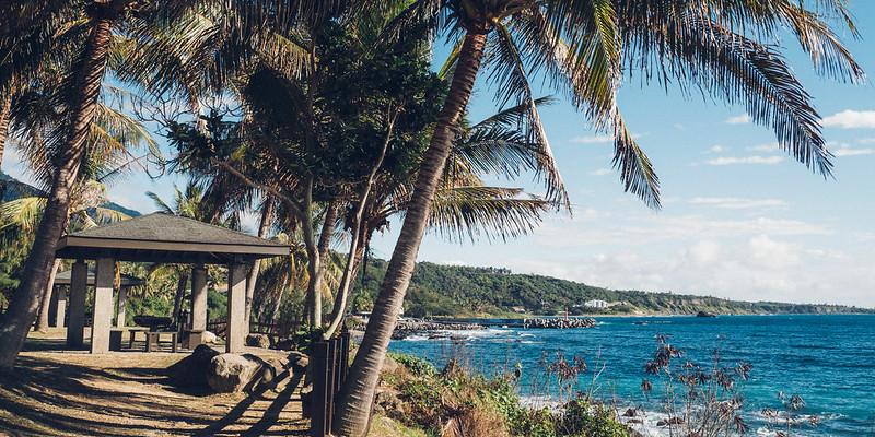 椰子海岸|台東 Taitung