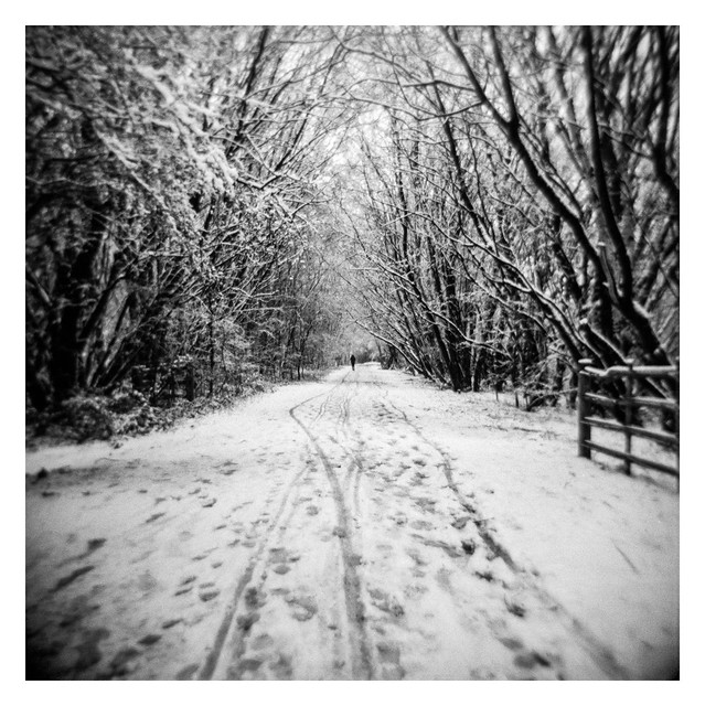 Distant figure on a snowy trail