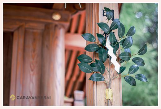 神社の境内で掲げられた榊の葉
