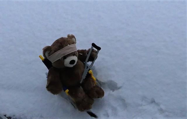 Happy Teddy Bear Tuesday - Be Safe My Friends
