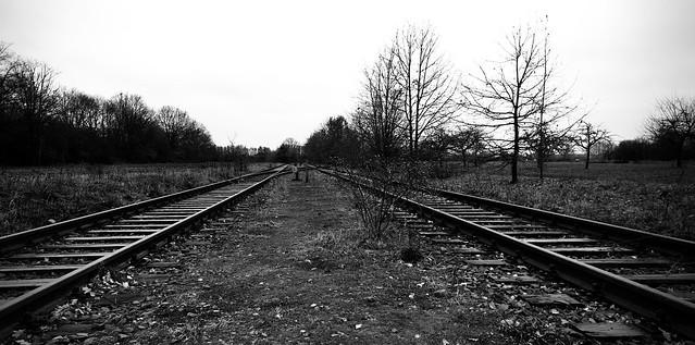 Abandoned Train Tracks 02