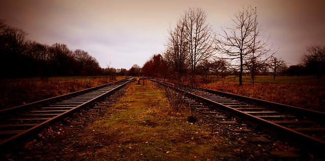 Abandoned Train Tracks 01