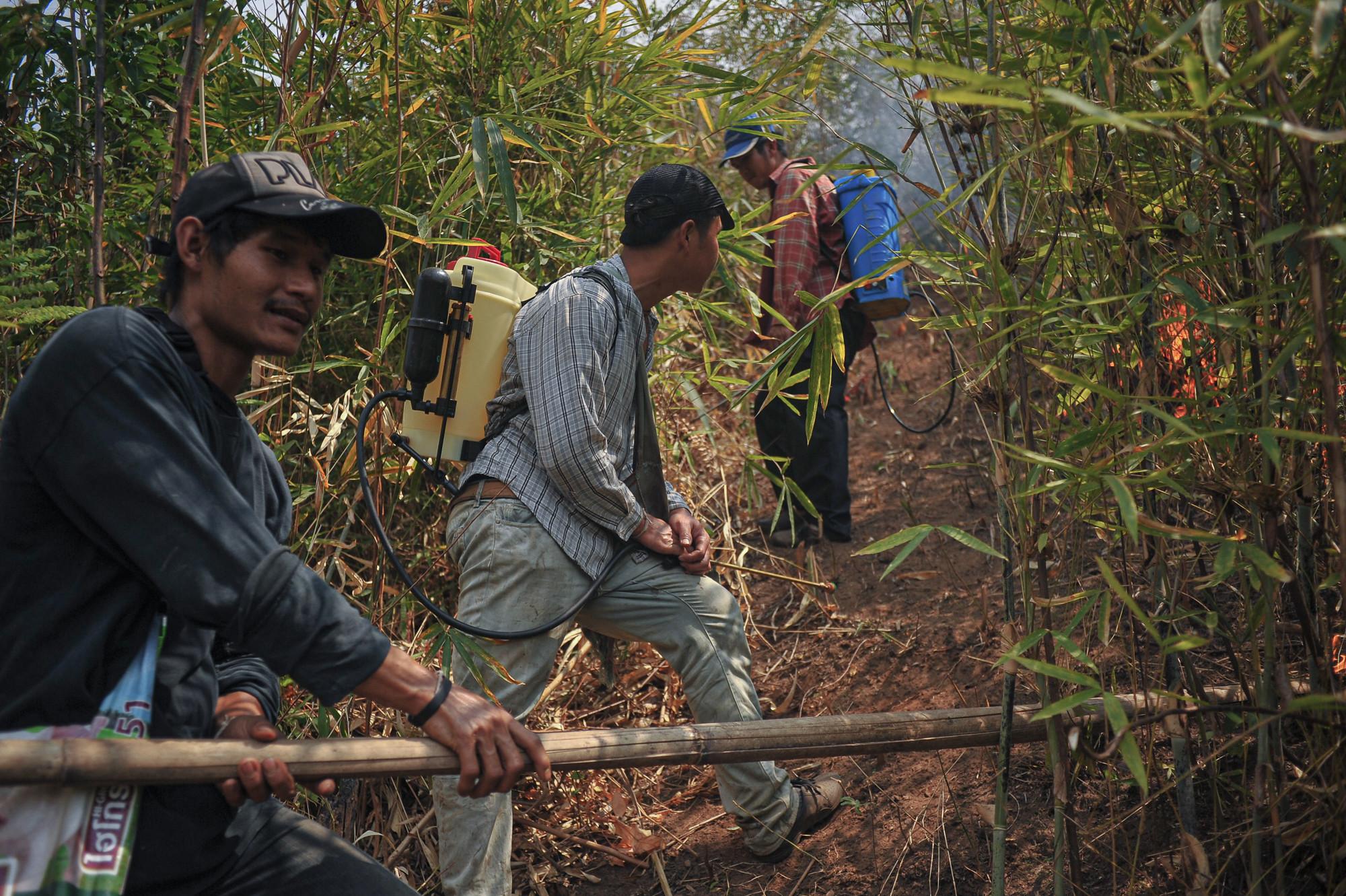 ชาวบ้านห้วยหินลาดในขณะกำลังช่วยกันกำจัดเชื้อเพลิงโดยการชิงเผา เพื่อเป็นการลดการสะสมของเชื้อเพลิงป้องกันไม่ให้เกิดไฟป่าที่รุนแรงในฤดูแล้ง ภาพถ่ายเมื่อ 19 เม.ย. 63 (ที่มา: นิพนธ์ ปุแคระ)
