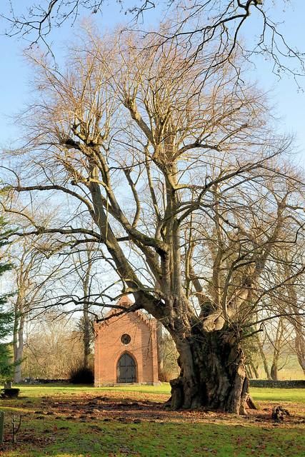 7153 Polchow liegt im Landkreis Rostock in Mecklenburg-Vorpommern.