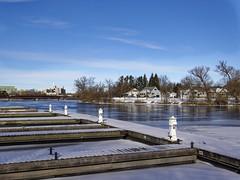 Frozen Docks at Marina