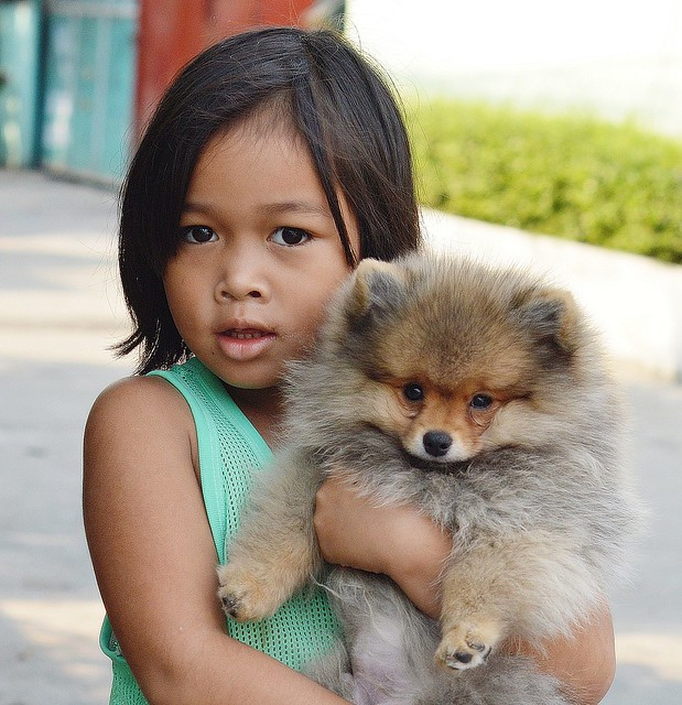 cute girl with cute dog