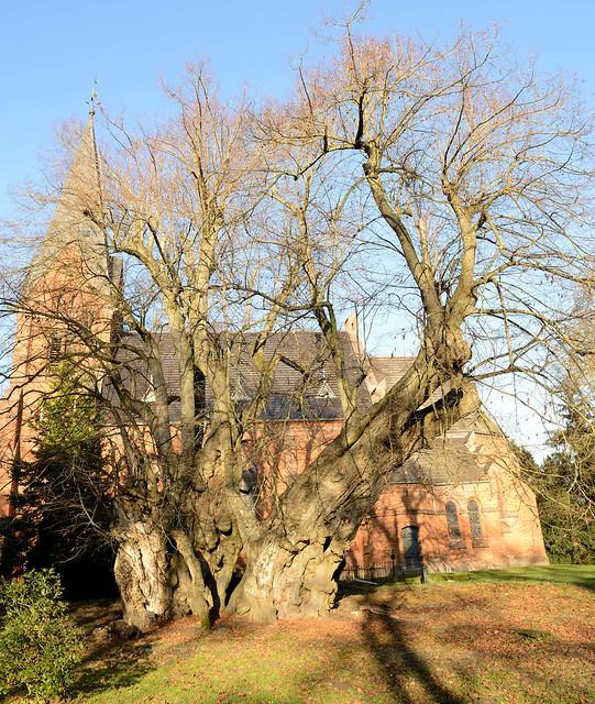 7154 Polchow liegt im Landkreis Rostock in Mecklenburg-Vorpommern.