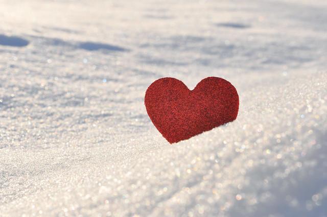 33/365 ~ snow love (Explored)