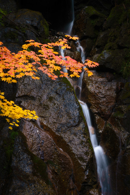 Falls in the Fall