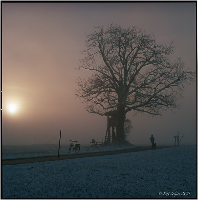 Morning haze with sunrise_Hasselblad 503cx