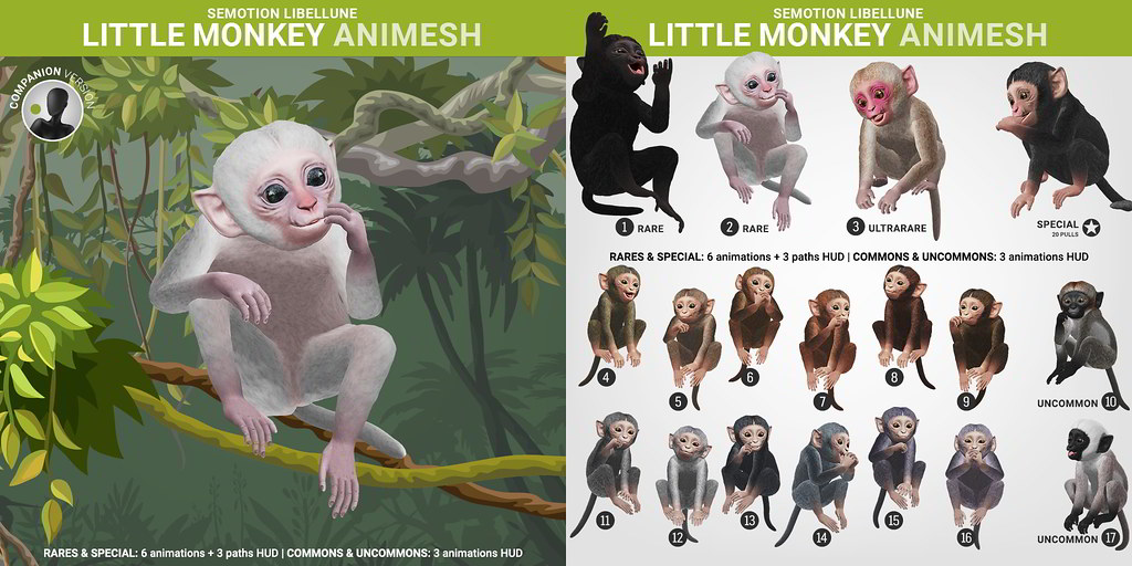 SEmotion Libellune Little Monkey Animesh