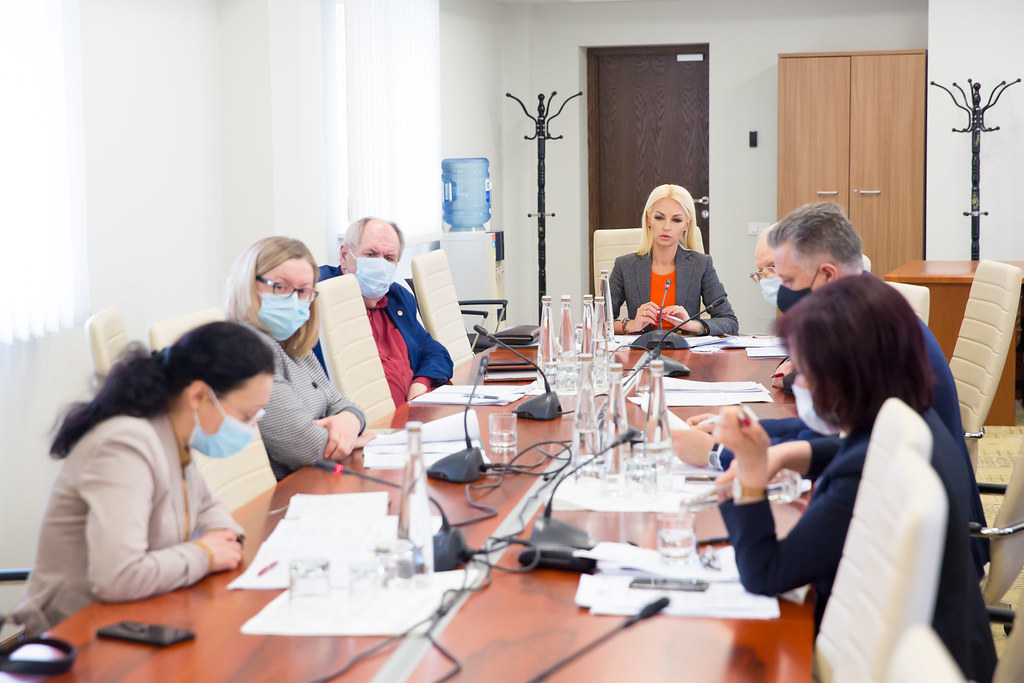 03.02.2021 Ședința Comisiei mediu și dezvoltare regională