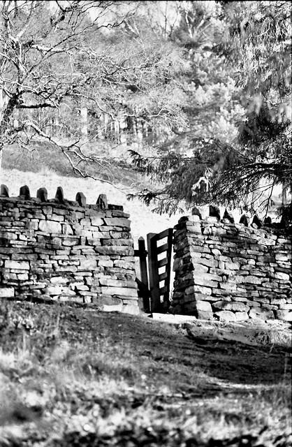 Through the gateway.