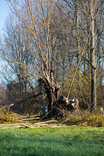 Knotten - Porre- en Paddebeekvallei Schoonaarde