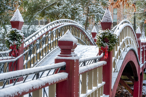 The Crim Dell bridge still looking festive from the holidays.