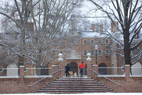 The first snowflakes of the season fell on the W&M campus at the end of January.