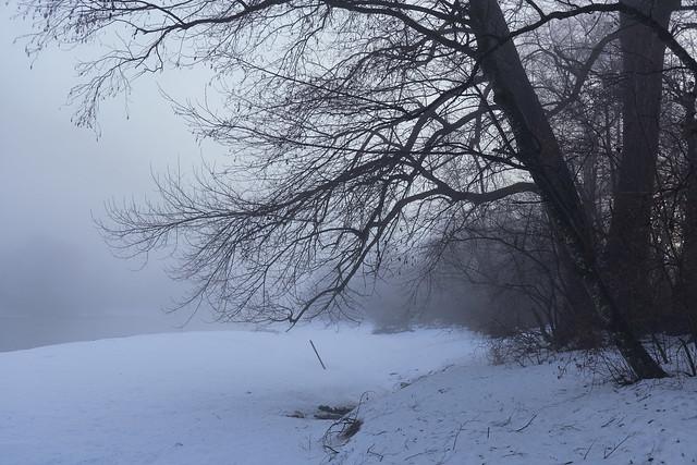 Wintermorgen am Innufer